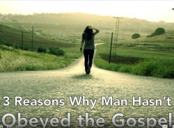 3 Reasons Why Man Hasn't Obeyed the Gospel